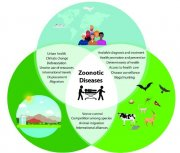 gallery/one-health-approach-to-address-zoonotic-diseases_w640